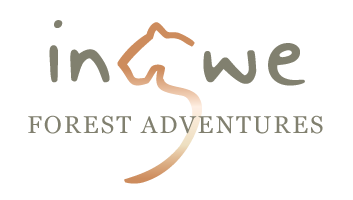 Ingwe Forest Adventures | Team Building, Events and Conference Venue Plettenberg Bay, Garden Route