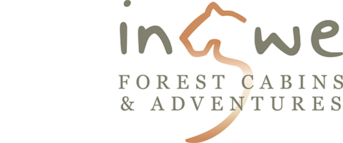 Ingwe Forest Adventures | Accommodation, Team Building, Events and Conference Venue Plettenberg Bay, Garden Route